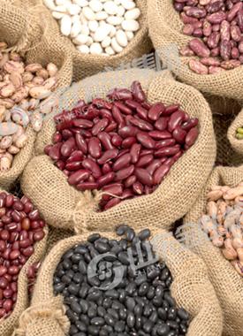 农副产品类