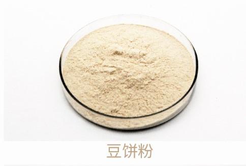 Bean Cake Powder